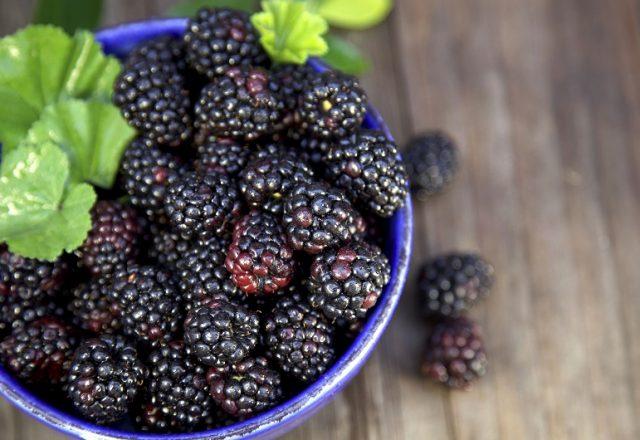 Raspberry hitam