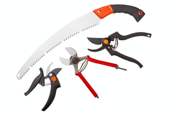 Pruner, tukang kayu, pisau taman dan lopper mesti diasah dan dibersihkan.