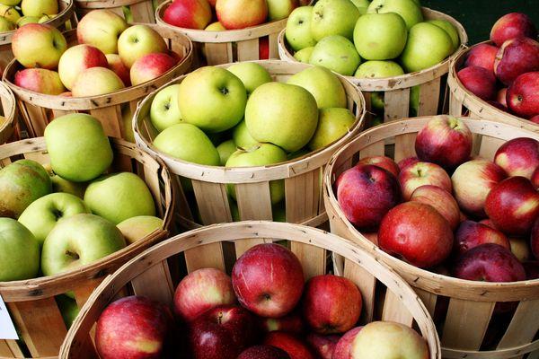 Pelbagai jenis epal