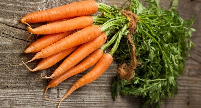 penanaman wortel menggunakan kaedah kizima